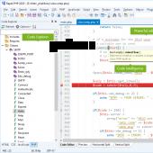 Rapid PHP 2014 12.2 screenshot