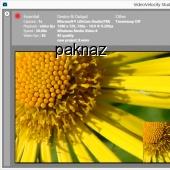 VideoVelocity 3.1.803 screenshot